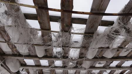 pavilion : old roof of boards and torn fabric. a strong wind is blowing and threads are hanging. winter