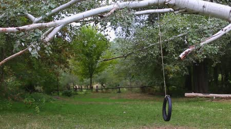 pneus : Tire swings on a rope for the childrens entertainment in the park. Stock Footage