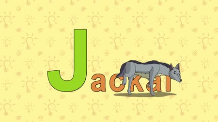 abeceda : Animation English alphabet. Letter J and word Jackal. 2D handmade animation.