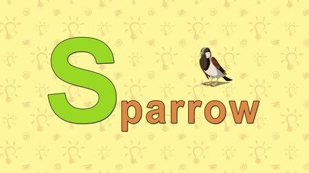 abeceda : Animation English alphabet. Letter S and word Sparrow. 2D handmade animation.