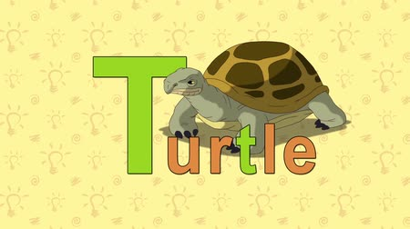 abeceda : Animation English alphabet. Letter T and word Turtle. 2D handmade animation.