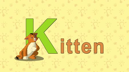 gato selvagem : Kitten. English ZOO Alphabet - letter K