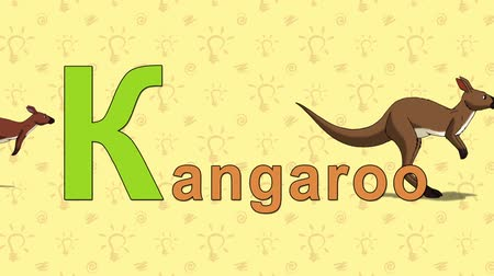 levél : Kangaroo. English ZOO Alphabet - letter K Stock mozgókép
