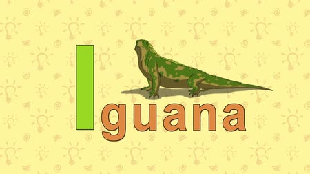 iguana : Iguana. English ZOO Alphabet - letter I