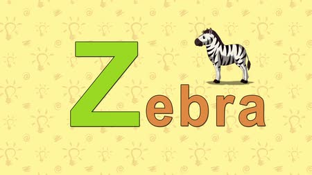 alphabet : Zebra. English ZOO Alphabet - letter Z Stock Footage