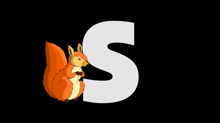 белка : Letter S and Squirrel (foreground)