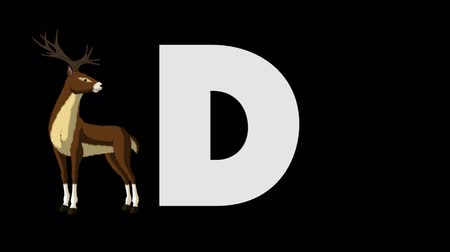 jelen : Letter D and Deer (foreground) Wideo