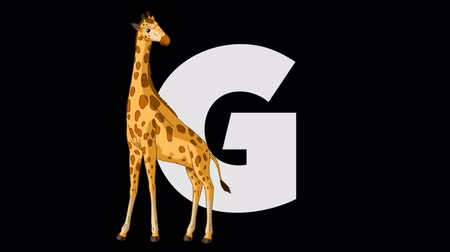 mamífero : Letter G and Giraffe (foreground)