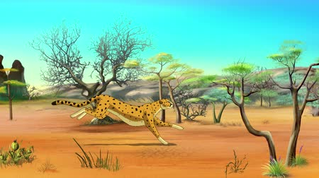 gepard : African Cheetah Running on Savannah. Handmade animation in UHD.
