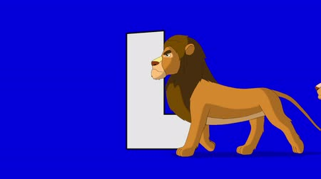 aslan : Letter L and Lion (foreground) Animated animal alphabet. Motion graphic with chroma key. Animal in a foreground of a letter. Stok Video