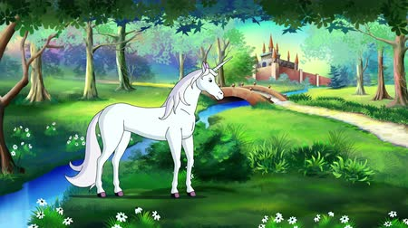 jardim zoológico : Fairy Tale Unicorn in a Magical Forest. Handmade animated UHD motion graphic.