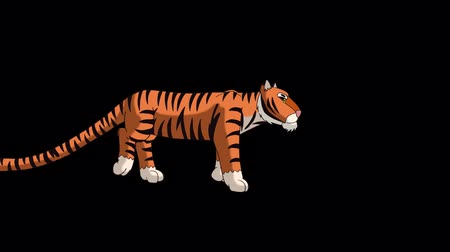 гул : Tiger Walks. Animated Motion Graphic with Alpha Channel.