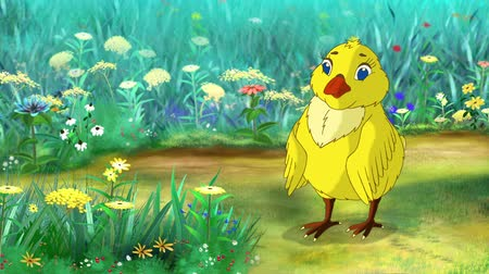 Yellow Chicken stands and pecks on a flower. Handmade animation, motion graphic.