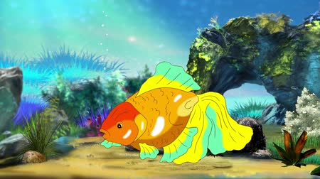 золотая рыбка : Multicolored Goldfish Floating in Aquarium. Handmade animation, looped motion graphic.