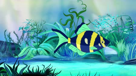 farpa : Blue-yellow Aquarium Fish floats in an aquarium. Handmade animation, looped motion graphic. Stock Footage