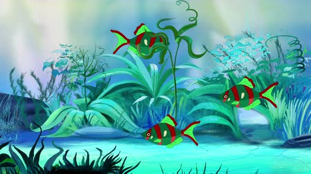 farpa : Small Red-green aquarium fishes floats in an aquarium. Handmade animation, looped motion graphic. Stock Footage