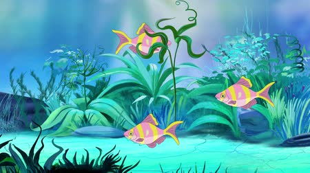 único : Small Rose-yellow striped aquarium fishes floats in an aquarium. Handmade animation, looped motion graphic.
