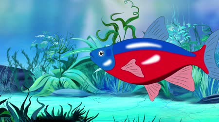 Red-blue striped Aquarium Fish floats in an aquarium. Handmade animation, looped motion graphic.