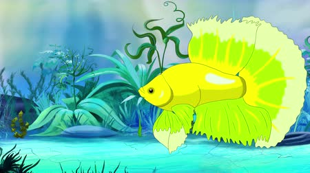 Green Aquarium cockerel fish floats in an aquarium. Handmade animation, looped motion graphic.