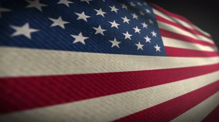 usa independence day : American Flag Style Fabric True Color Slow 3d Stock Footage