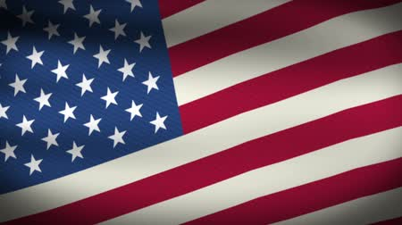 usa independence day : American Flag Style 5 – Vibrant Slow Flow Up  Stock Footage