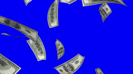 durgunluk : Falling Dollars (Loop on Blue Screen). Falling 100 dollars bills. Perfect for your own background. Seamless loop, no motion blur, clean mask on blue screen. Stok Video