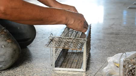 rodent control : Old man use Mackerel fish for A rat cage trap containing bread as bait
