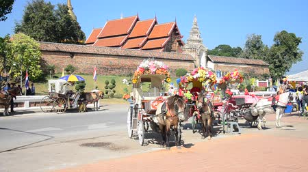 Horses drawn carriage waiting travelers people use service tour around city at Wat Phra That Lampang Luang Buddhist Temple in Lampang, Thailand