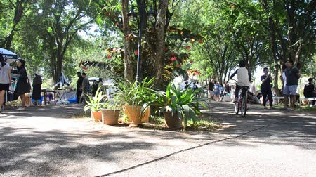 Thai people and foreigner travellers walking travel and shopping at organic street market in garden in Nakhon Ratchasima, Thailand