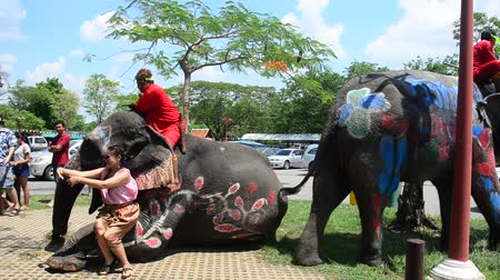 thai kültür : Thai people and foreigner travelers playing and splashing water with elephants and people in Songkran Festival at Ayutthaya city on April 14, 2017 in Ayutthaya, Thailand Stok Video