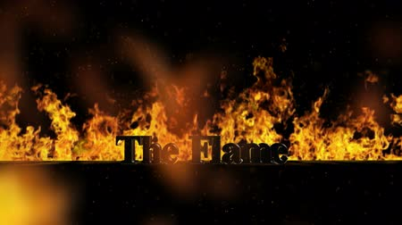 carrancudo : The Flame Burning Hot Word in Fire Stock Footage
