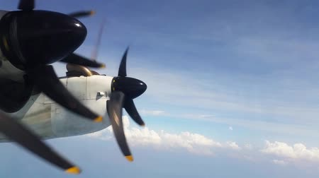 pervane : Propeller of a plane during flight Stok Video