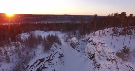 winter day : Panorama of the forest landscape. The sun is rising. Shooting from the air.