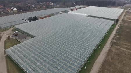 The camera is located above the glass roof. The greenhouse complex is visible.