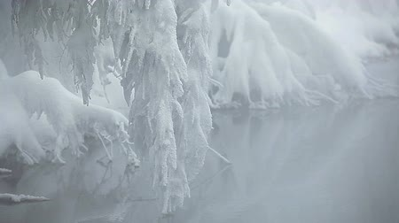 magical : Snow-swinging branch above water in winter season