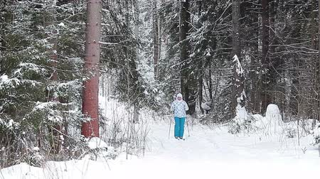 sportsmen : Skiing in forest in cold winter day. Russian woman, Saint-Petersburg, Russia Stock Footage