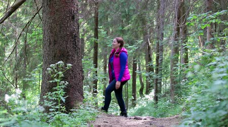 только один человек : Attractive Caucasian woman walking and hugging a big pine tree trunk in the forest