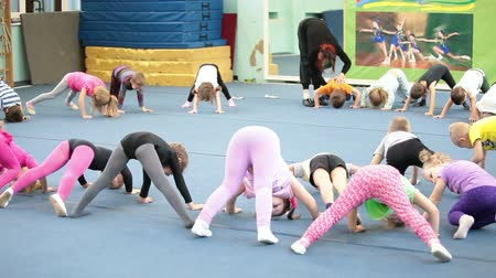 sport dzieci : Children on the lesson in acrobatics for preschoolers in Russian sport school, Russia