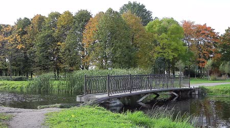 small park : Small bridge across pond in autumn park. Nobody