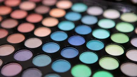 kirpikleri : Make-up multicolor cosmetic palette. Selective focus