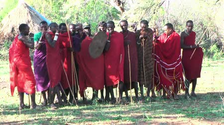 традиционный : NGORONGORO, KIGALI, TANZANIA - CIRCA DEC, 2011: People of Maasai tribe during wedding ceremony jumping and singing. Men warriors standing opposite to several women