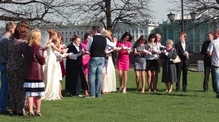 gołąbki : Man arranges the people in line for photographing with pigeons. Wedding walking. Russia