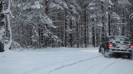 содействие : Black car moving between pine trees in winter forest, Karelia, Russia. Turning in snow Стоковые видеозаписи