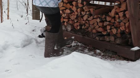 fur boots : Woman in felt boots coming to a draw-heavy woodpile in Russian village at winter Stock Footage