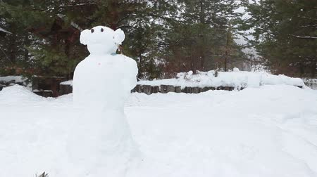 kardan adam : Funny snowman standing snowy field in rural house yard at winter season