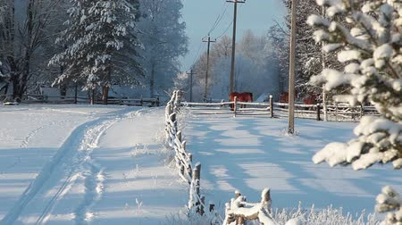 vidéki színhely : Rural landscape in Russian village with horses on snowy field at winter season, Russia Stock mozgókép