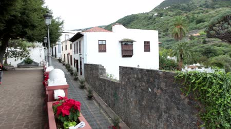 marcos : ICOD DE LOS VINOS, TENERIFE, SPAIN - CIRCA JAN, 2016: Place of growing Dragon tree is other side of narrow street, near the Iglesia Mayor de San Marcos church. Dracaena is a natural symbol of Tenerife Vídeos