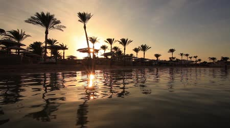 reflexão : Sunset reflection in the water on the beach. Egypt Vídeos