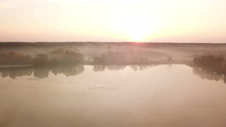 Forest lake in the morning fog, in the rays of the dawn sun. Drone footage. Стоковые видеозаписи