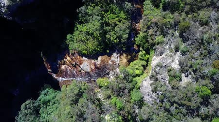 rivulet : Creek in national park. Creek in the forest. Aerial photography. Aerial top view.